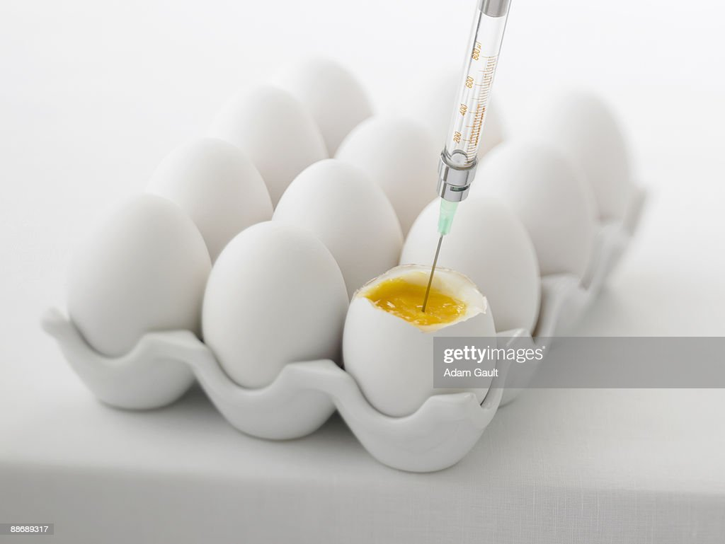 Close up of syringe injecting yolk of egg : Stock Photo