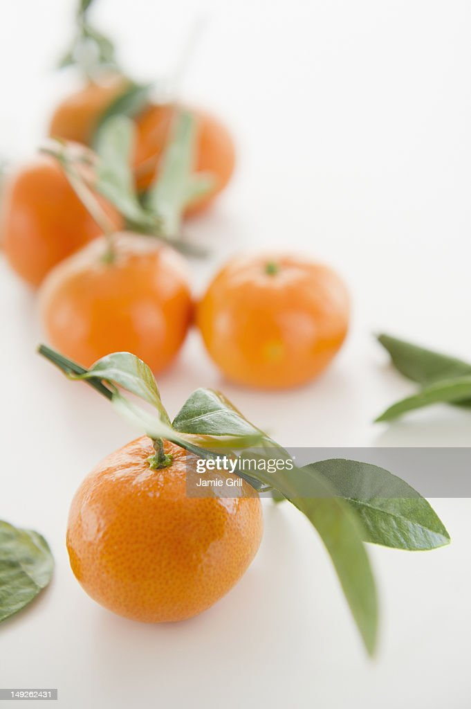Close up of tangerines with leaves, studio shot