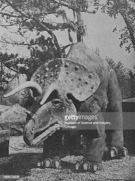 Close up of the model of a Triceratops in the Sinclair Prehistoric Dinosaur exhibit at the Century of Progress International Exposition The Century...