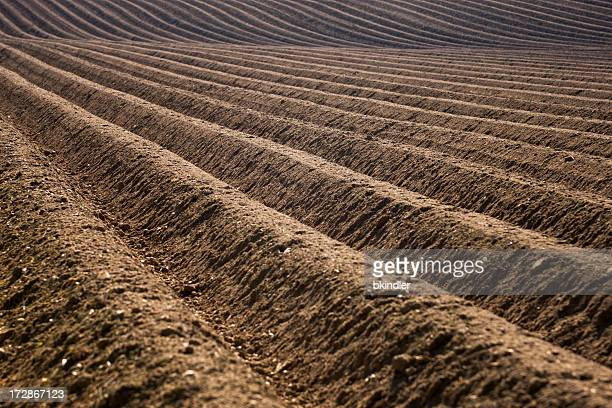 Close up of the rows in a plowed field