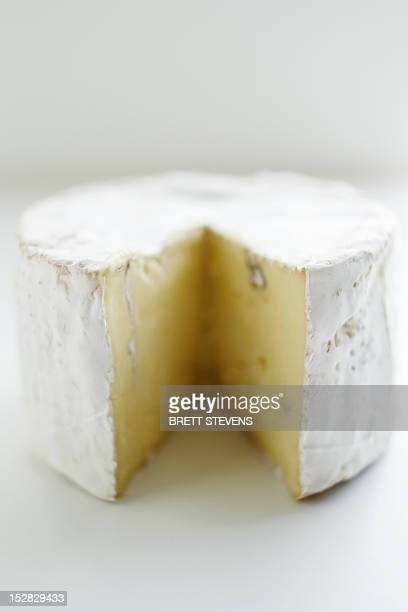 Close up of wheel of cheese