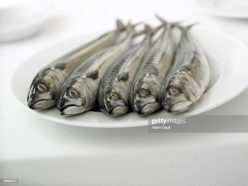 Close up of  whole, uncleaned fish on plate : Stock Photo