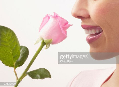 Close up of woman smelling pink rose : Stock Photo