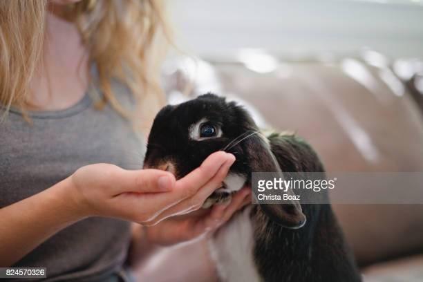 Close up on Rabbit Feeding