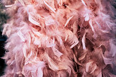 warm feather boa in soft pink