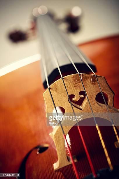 Close up shot of cello bridge
