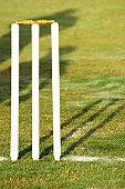 Close up shot of cricket stumps