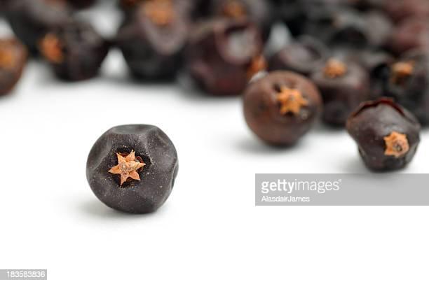 Close up shot of juniper berry