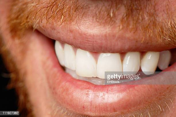 Close Up Smile with Reddish Beard Whiskers