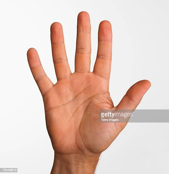 Close up studio shot of palm side of man's hand