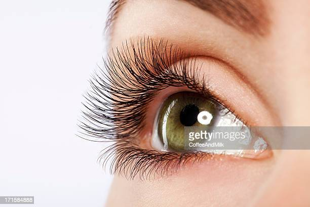 Close up studio shot of woman's eye