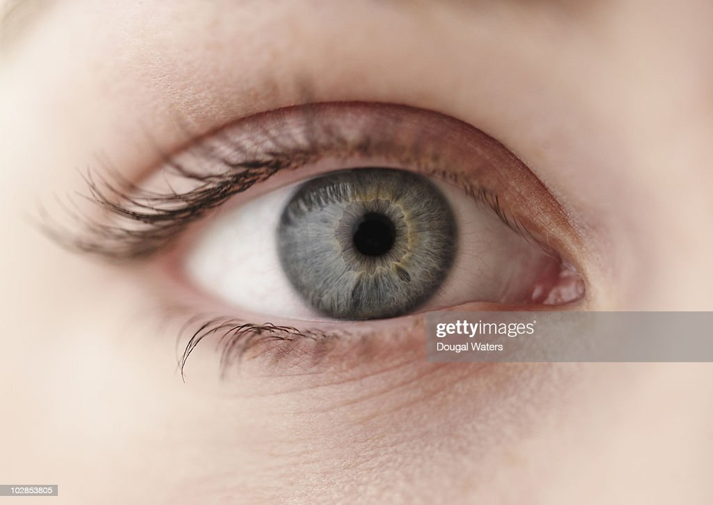 Close up view of eye. : Stock Photo