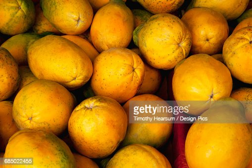 Close up view of ripe papaya at an organic farmers market : Stock Photo