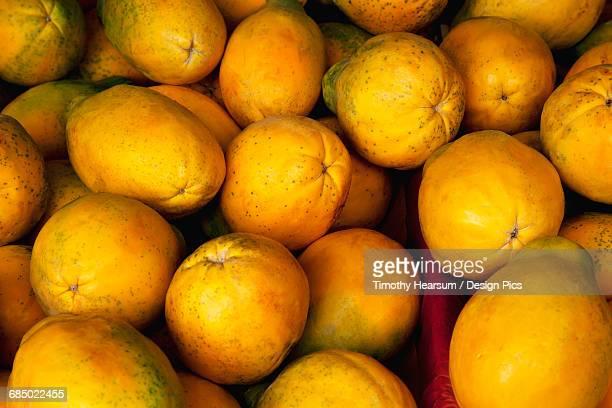 Close up view of ripe papaya at an organic farmers market