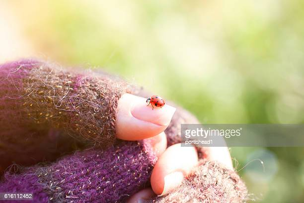 Close view of ladybug standing on female finger