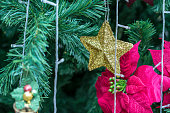 Closed up shiny gold Christmas star hanging under spruce tree for winter holiday background.