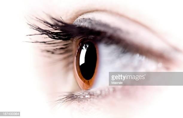 Makro-Eye