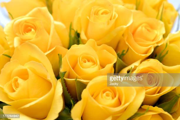 Close-up image of yellow rose bouquet