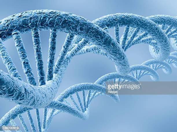 Closeup montage of two blue DNA strands