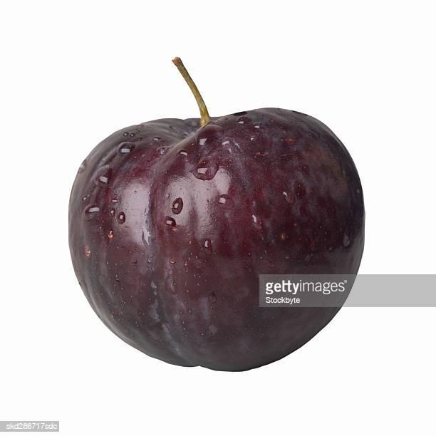 Close-up of a black plum