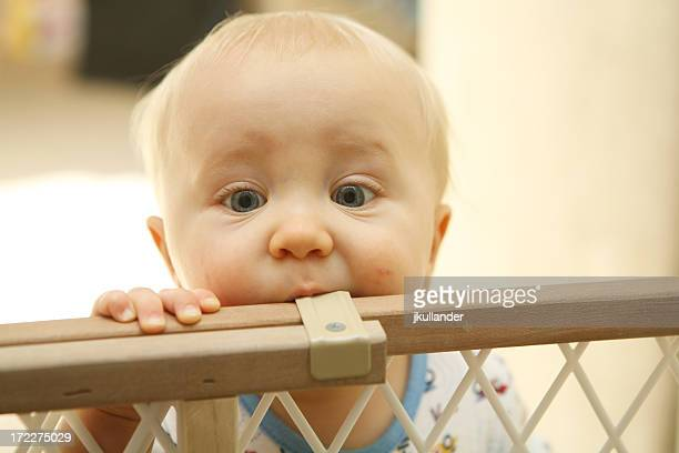 Closeup of a blue eyed baby boy teething on a baby gate