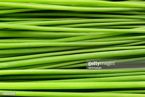 Close-up of a bunch of chives laying down.