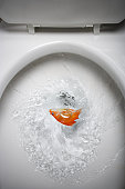 Close-up of a dead goldfish being flushed in a toilet bowl
