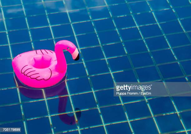 Close-Up Of A Floating Inflatable Flamingo