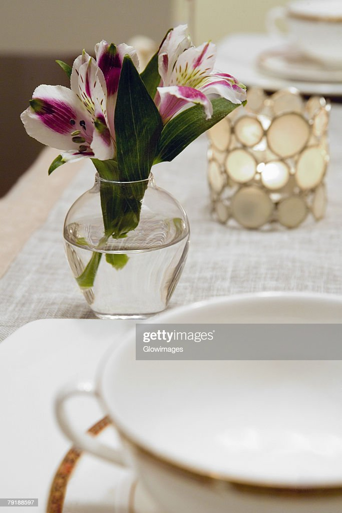 Close-up of a flower vase on a dining table : Foto de stock
