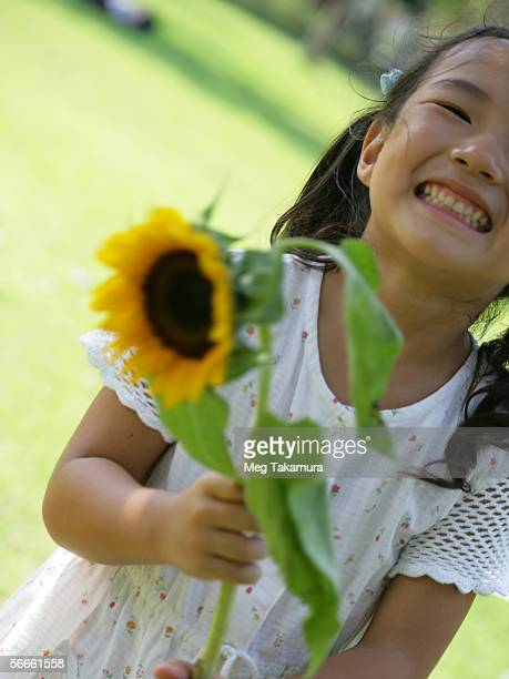 Close-up of a girl holding a sunflower