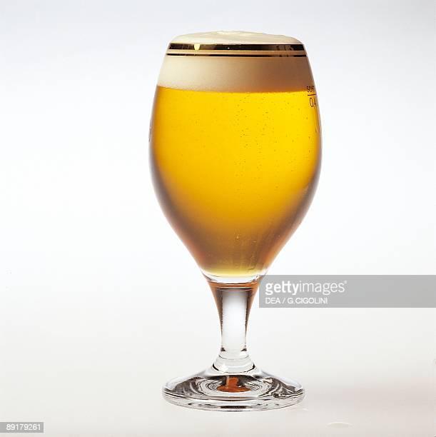 Closeup of a glass of Hungarian beer