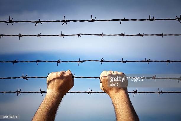Closeup of a hands on barbed wire