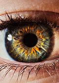 Close-up of a human eye and iris