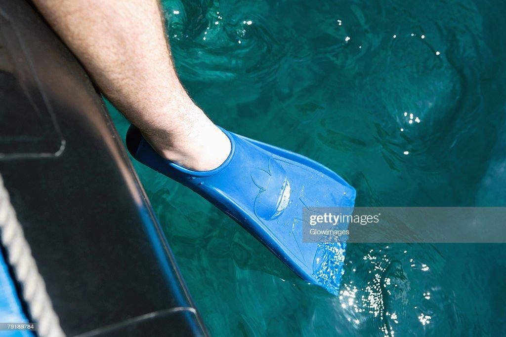 Close-up of a man's leg wearing a flipper : Foto de stock