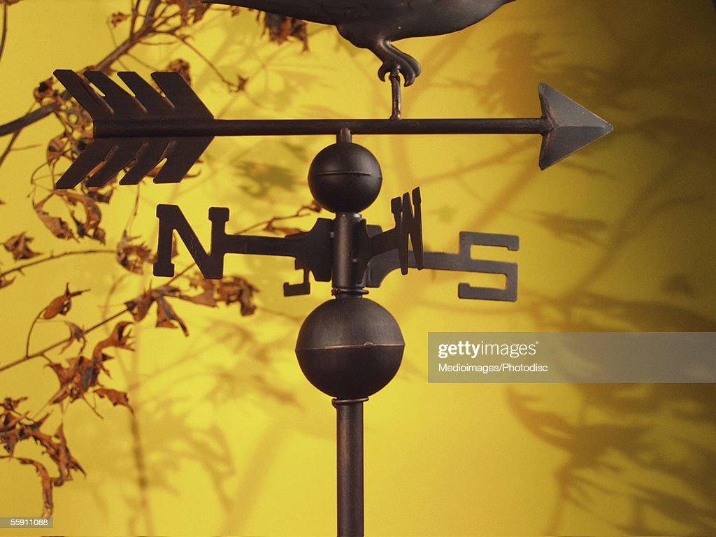 Close-up of a metal weather vane : Stock Photo