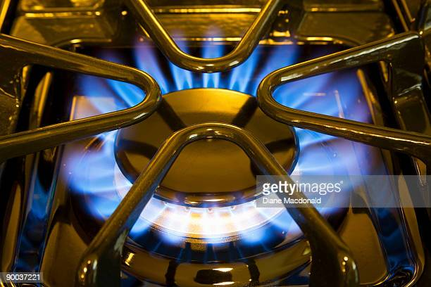 A close-up of a natural gas stove top flame