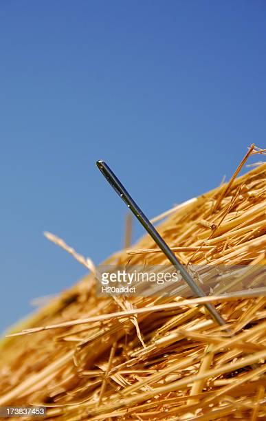 Die Nadel im Heuhaufen