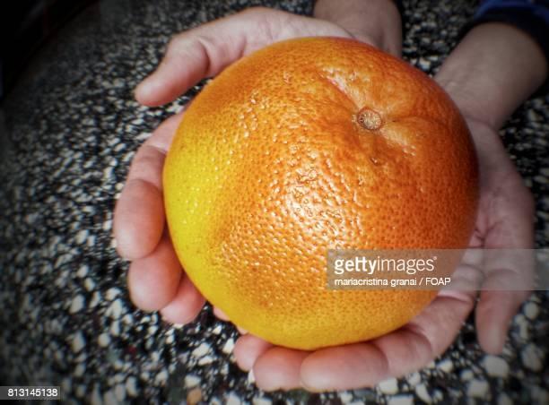 Close-up of a orange