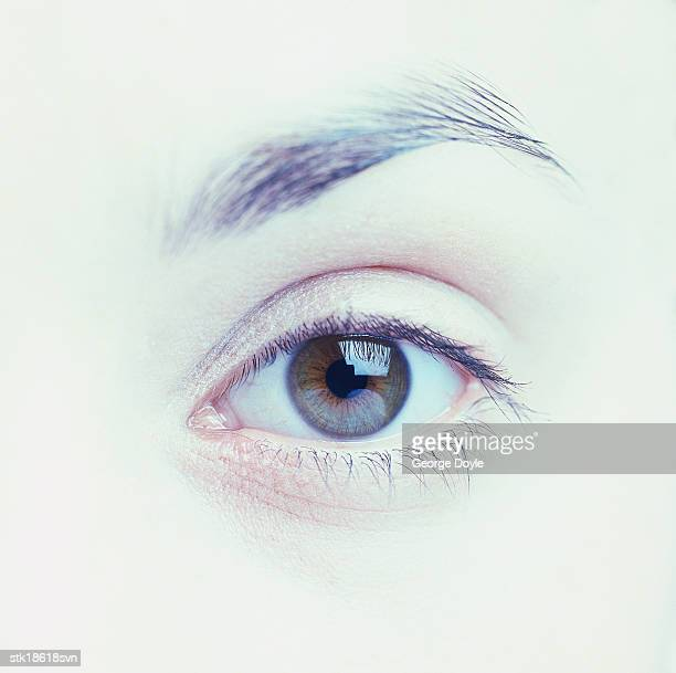 close-up of a persons eye (tungsten)