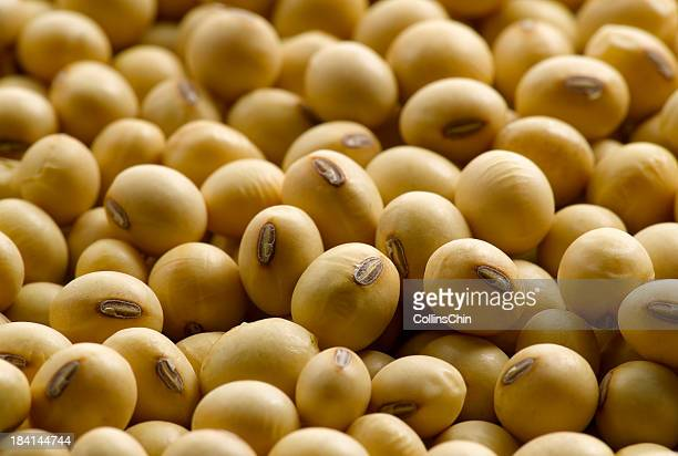 Close-up of a pile of soybeans