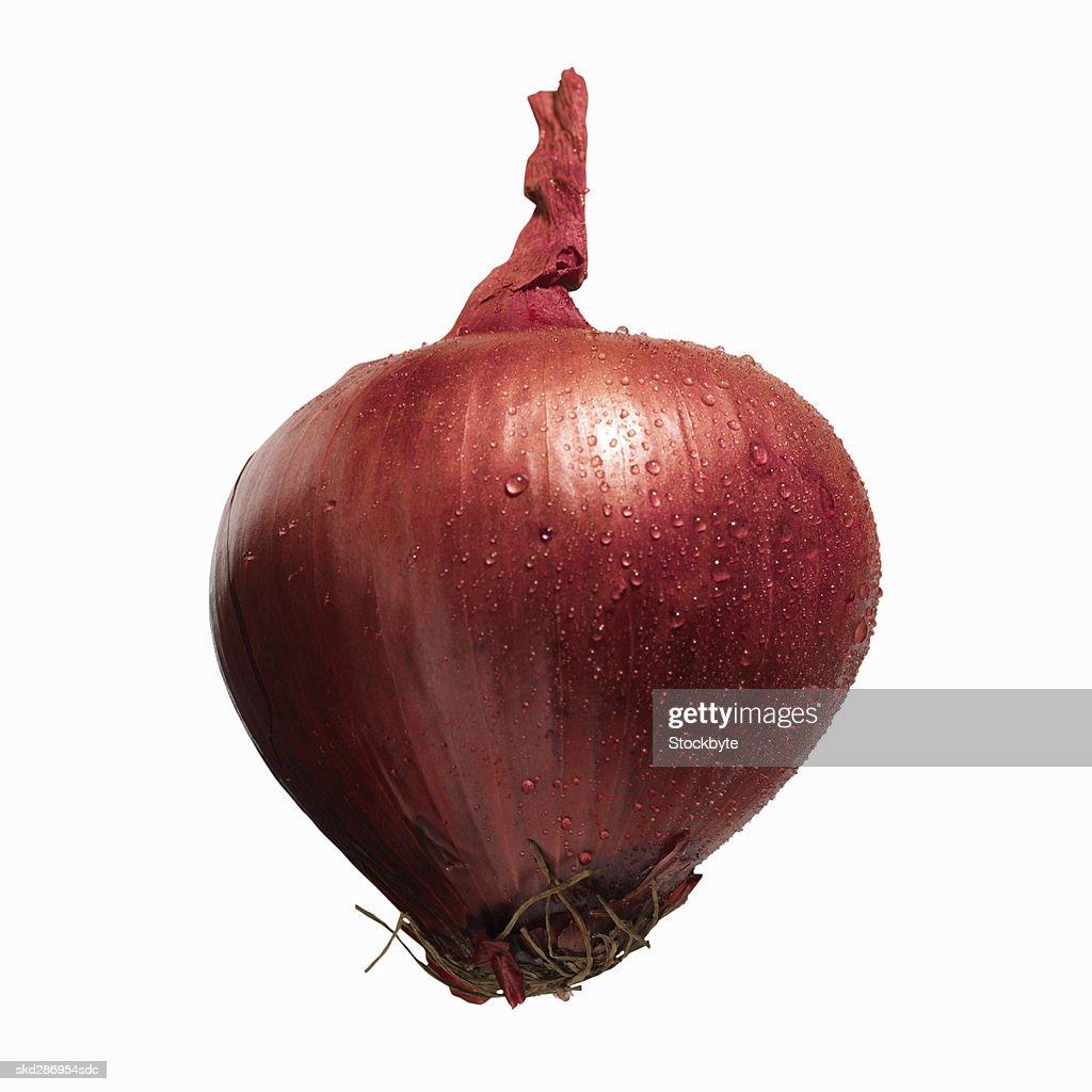 Close-up of a purple onion : Stock Photo