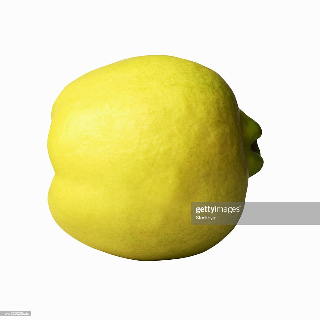 Close-up of a quince : Stock Photo