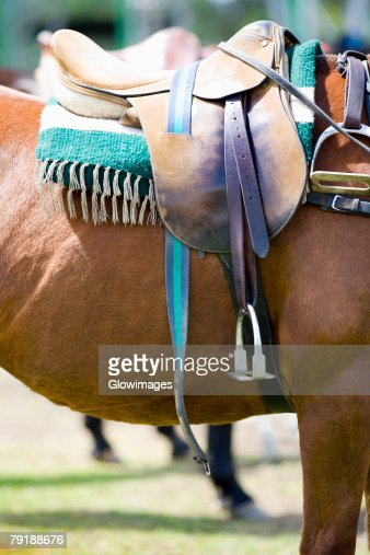 Close-up of a saddle on a horse : Stock Photo