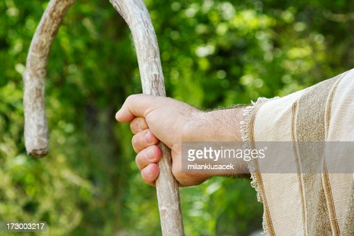 Closeup of a shepherd's hand holding a wooden crook