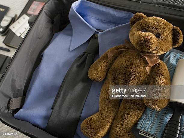 Close-up of a teddy bear in a suitcase
