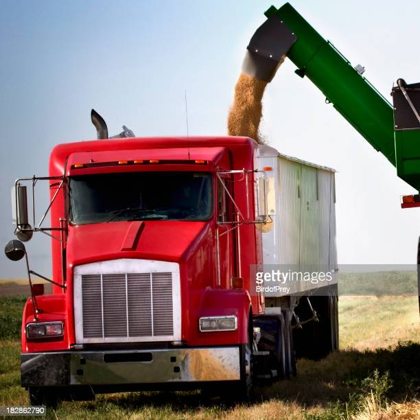Close-up of a truck with heavy equipment transferring wheat