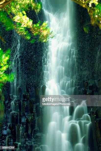 Close-up of a waterfall, Los Chorros Falls, Poas Valley, Costa Rica