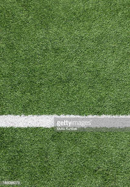 A close-up of a white line on a soccer field