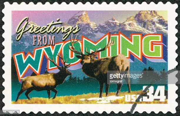 A close-up of a Wyoming postage stamp