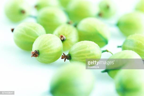 close-up of an array of fresh green gooseberries
